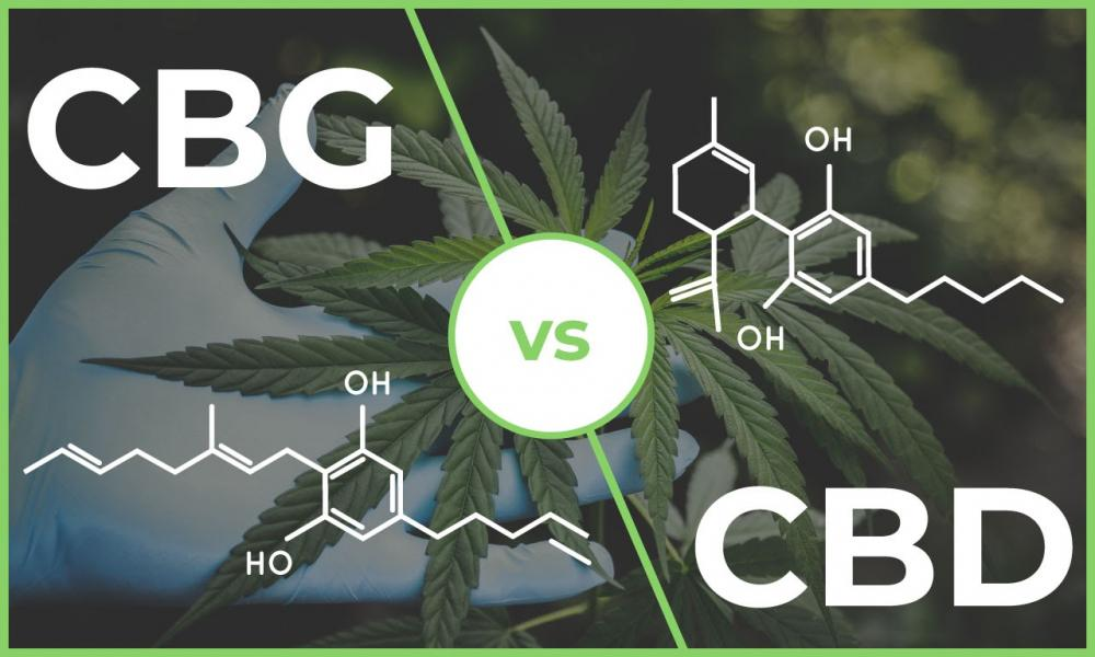 What is CBG? (CBG vs. CBD)